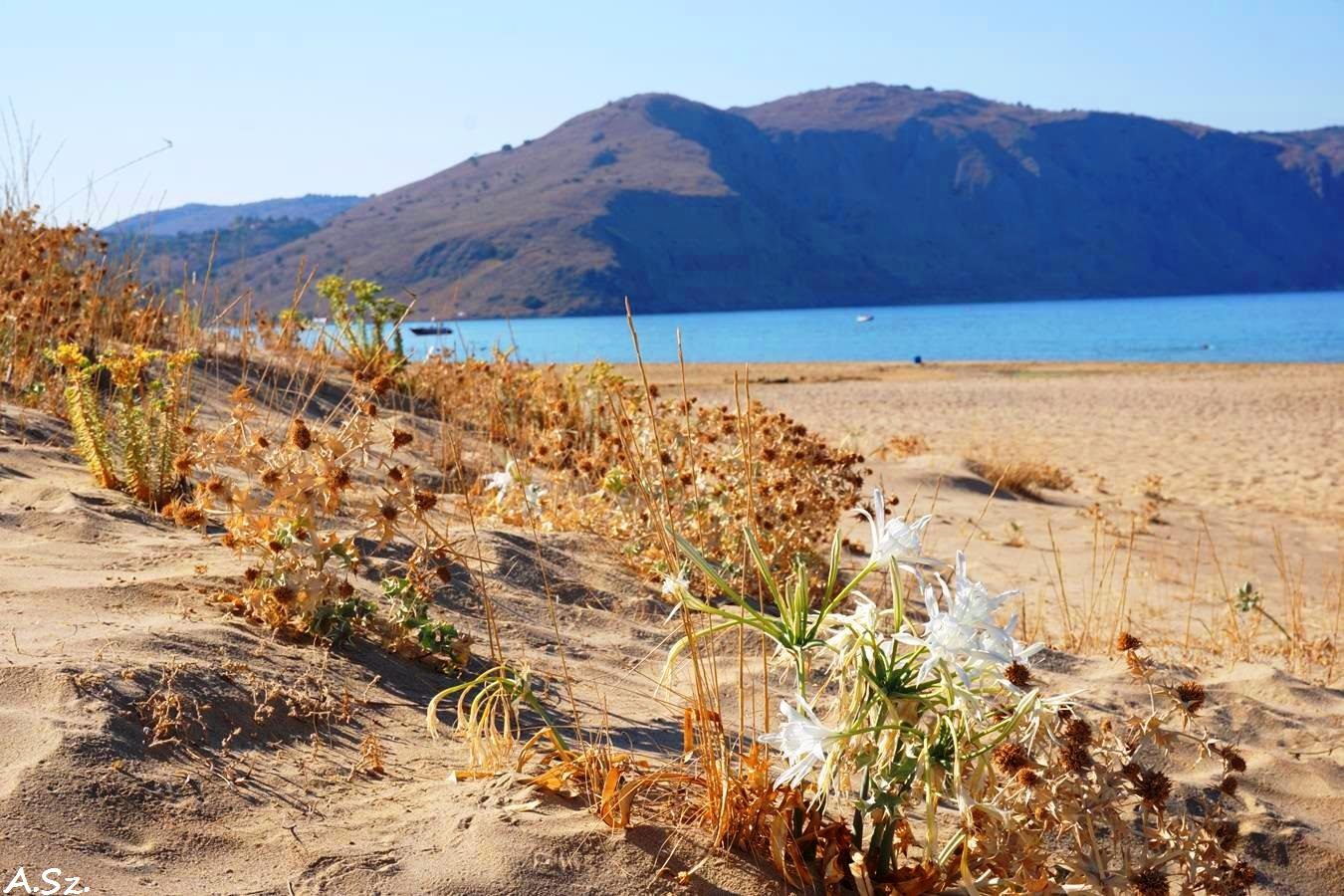 Big seafront plot ideal for a hotel in Georgioupolis