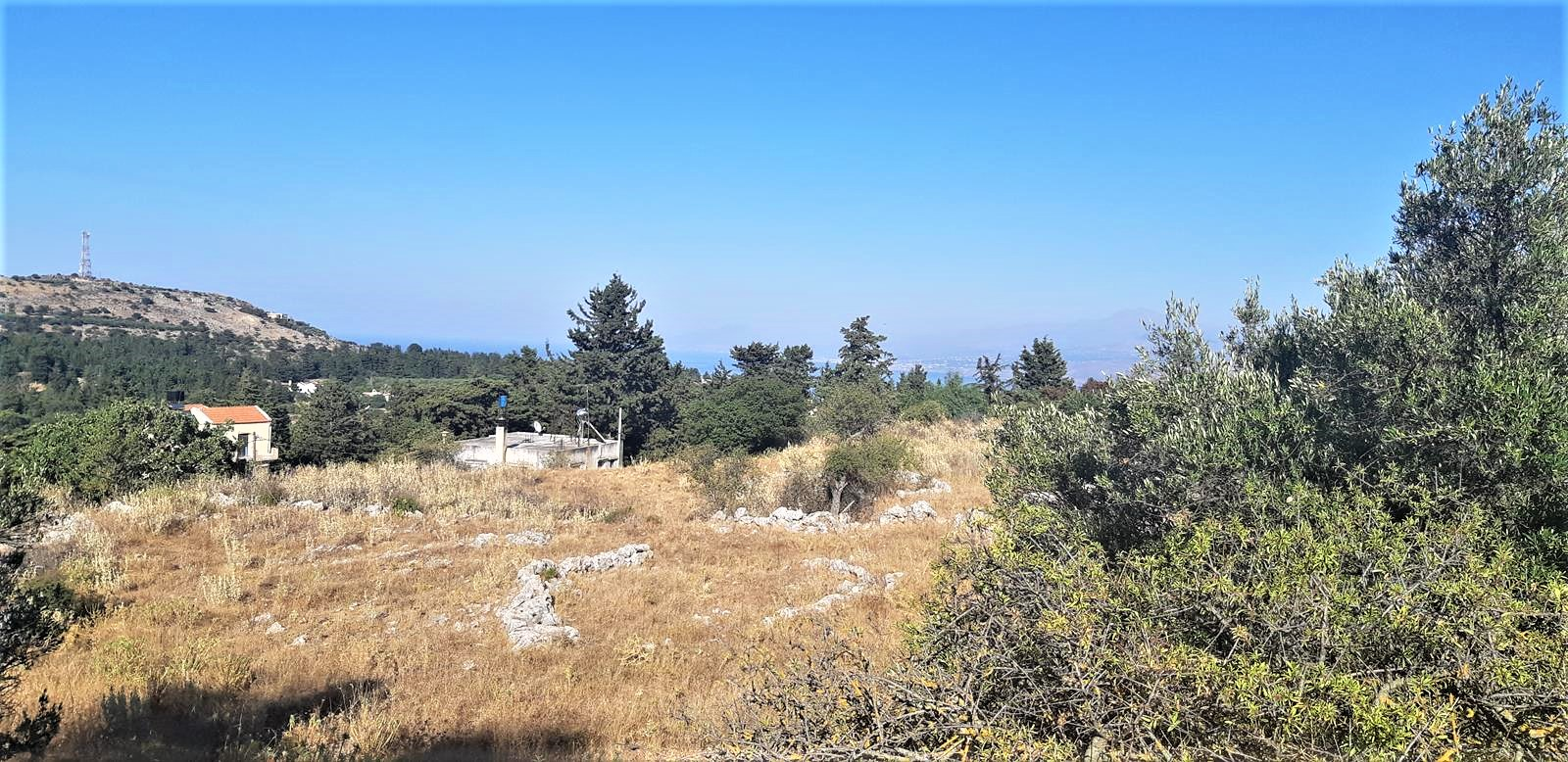 Plot with a high building capacity in Sellia