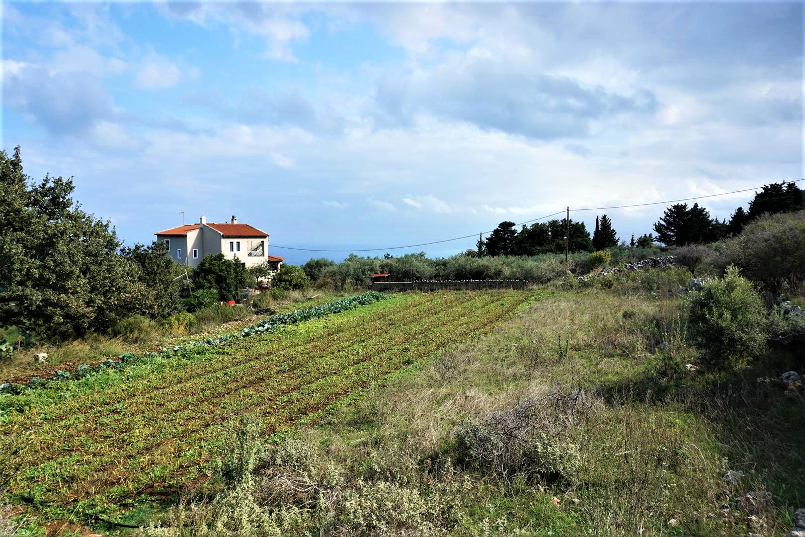 Plot with a sea view in Sellia